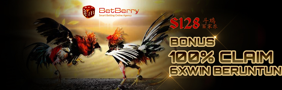 Promo Sabung Ayam – Bonus 100% Claim 6x Win Beruntun