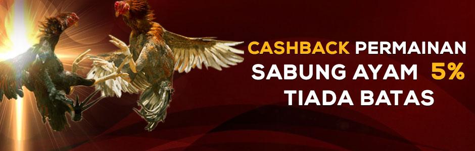 Cashback Permainan Sabung Ayam 5% Tiada Batas